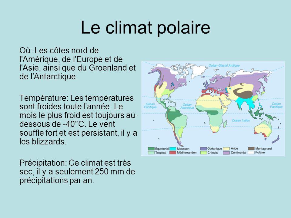 Le climat polaire Où: Les côtes nord de l'Amérique, de l'Europe et de l'Asie, ainsi que du Groenland et de l'Antarctique. Température: Les température