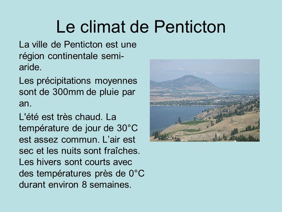 Le climat de Penticton La ville de Penticton est une région continentale semi- aride. Les précipitations moyennes sont de 300mm de pluie par an. L'été