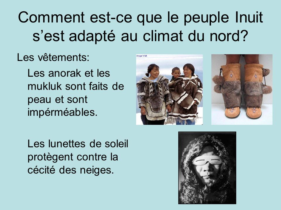 Comment est-ce que le peuple Inuit sest adapté au climat du nord? Les vêtements: Les anorak et les mukluk sont faits de peau et sont impérméables. Les