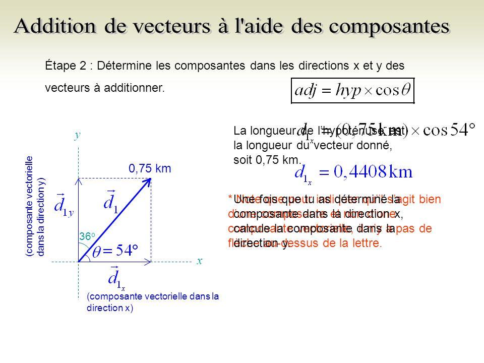 Étape 2 : Détermine les composantes dans les directions x et y des vecteurs à additionner.