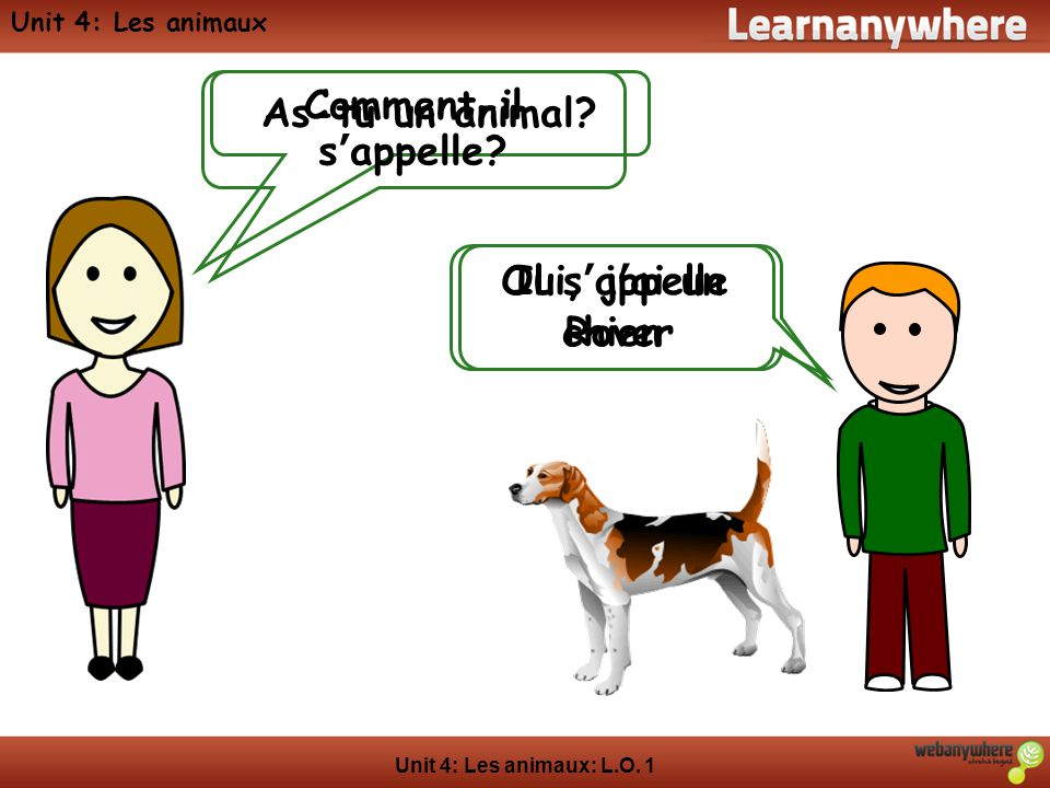 Unit 4: Les animaux: L.O.1 Unit 4: Les animaux As-tu un animal.