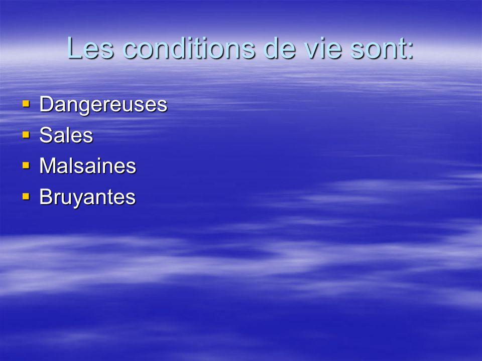 Les conditions de vie sont: Dangereuses Dangereuses Sales Sales Malsaines Malsaines Bruyantes Bruyantes