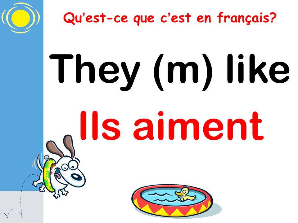 Qu est-ce que c est en français? They (m) like Ils aiment