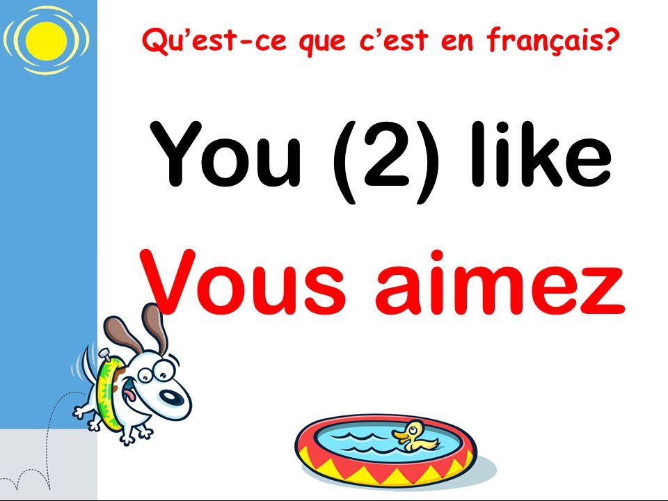Qu est-ce que c est en français? You (2) like Vous aimez
