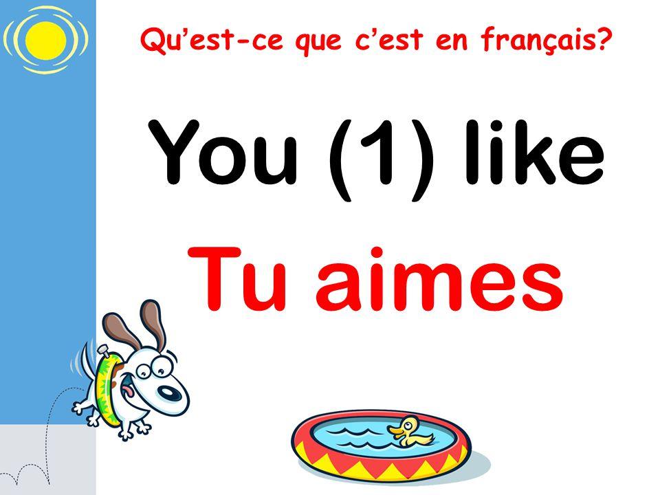 Qu est-ce que c est en français? You (1) like Tu aimes