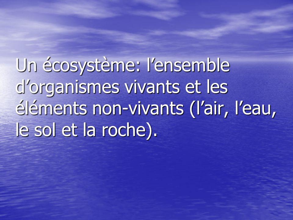 Un écosystème: lensemble dorganismes vivants et les éléments non-vivants (lair, leau, le sol et la roche).