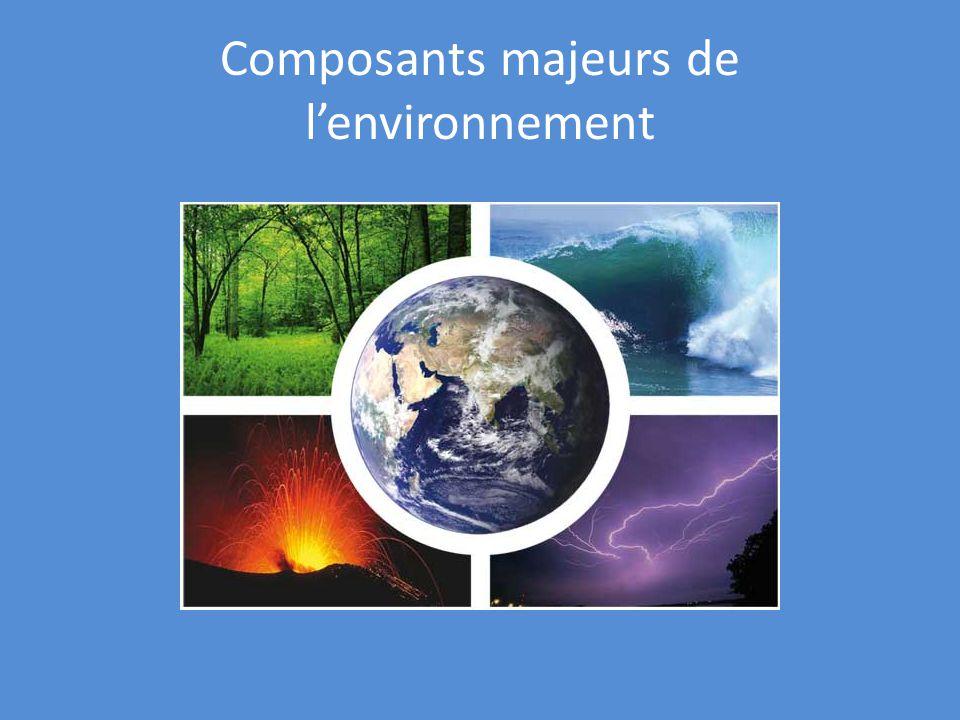 Composants majeurs de lenvironnement