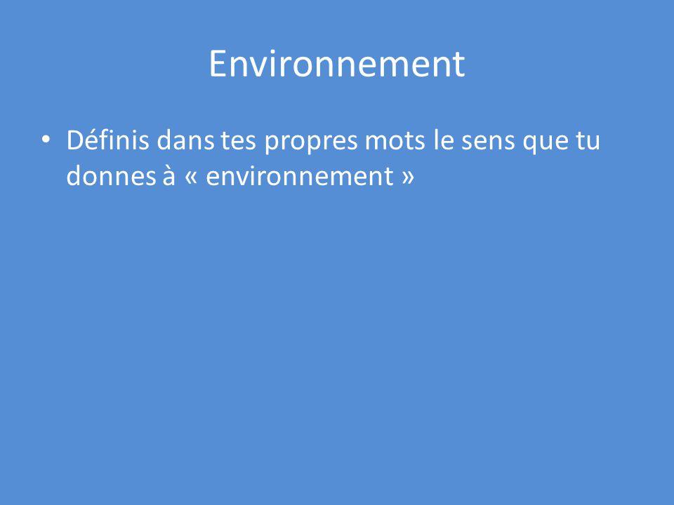 Environnement Définis dans tes propres mots le sens que tu donnes à « environnement »