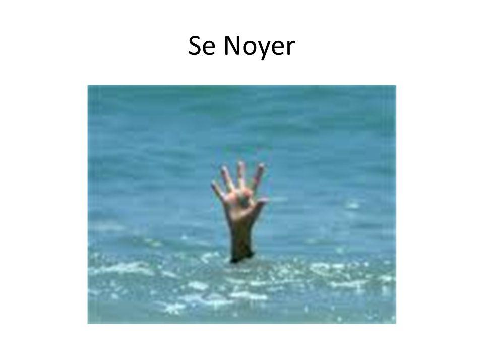 Se Noyer