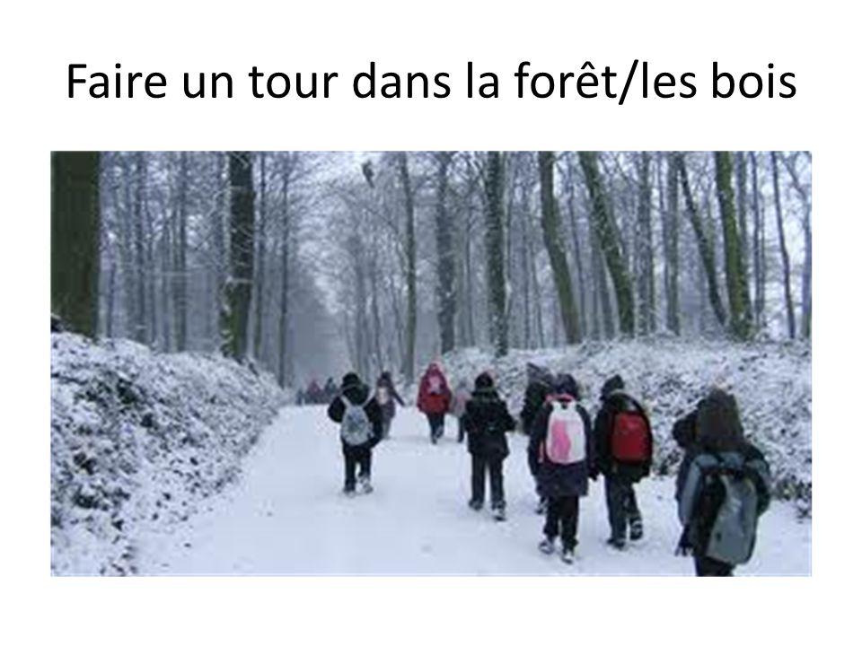 Faire un tour dans la forêt/les bois