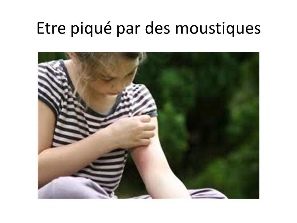 Etre piqué par des moustiques
