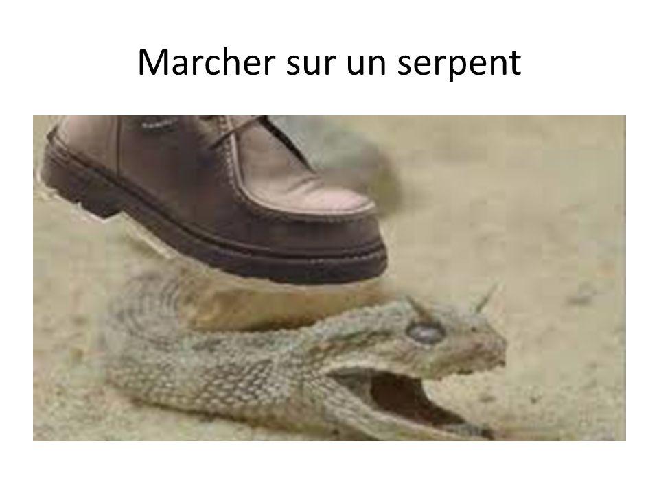 Marcher sur un serpent