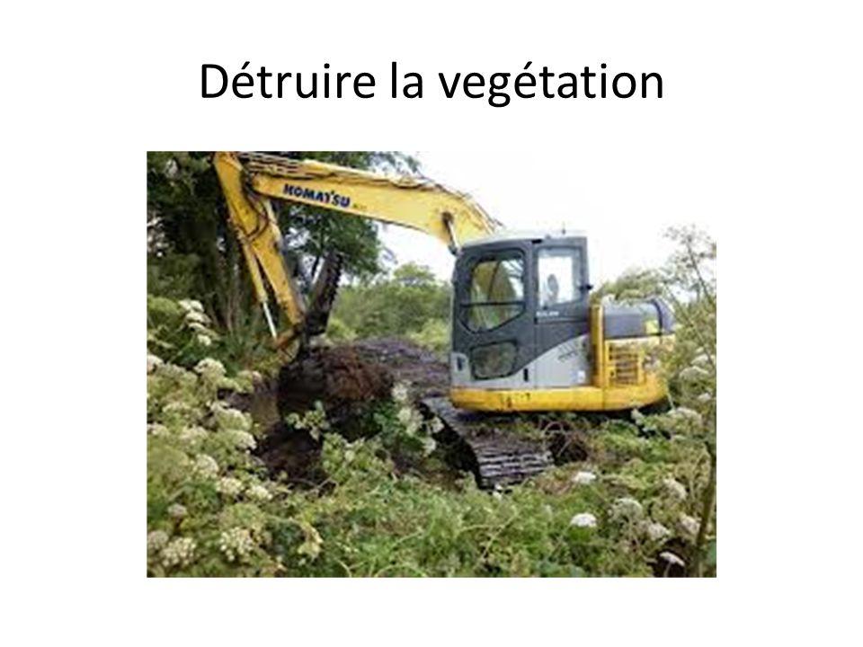 Détruire la vegétation