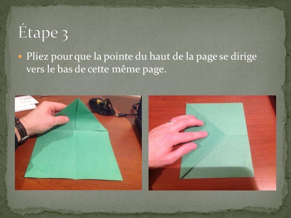 Pliez pour que la pointe du haut de la page se dirige vers le bas de cette même page.