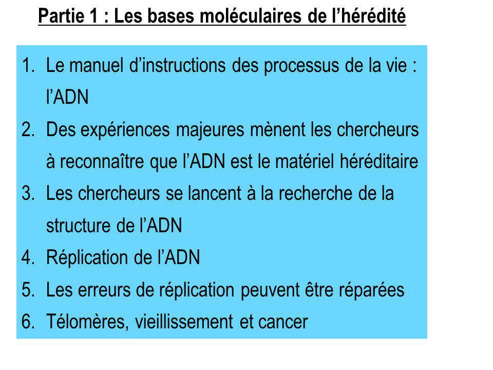 1.Le manuel dinstructions des processus de la vie : lADN 2.Des expériences majeures mènent les chercheurs à reconnaître que lADN est le matériel héréd