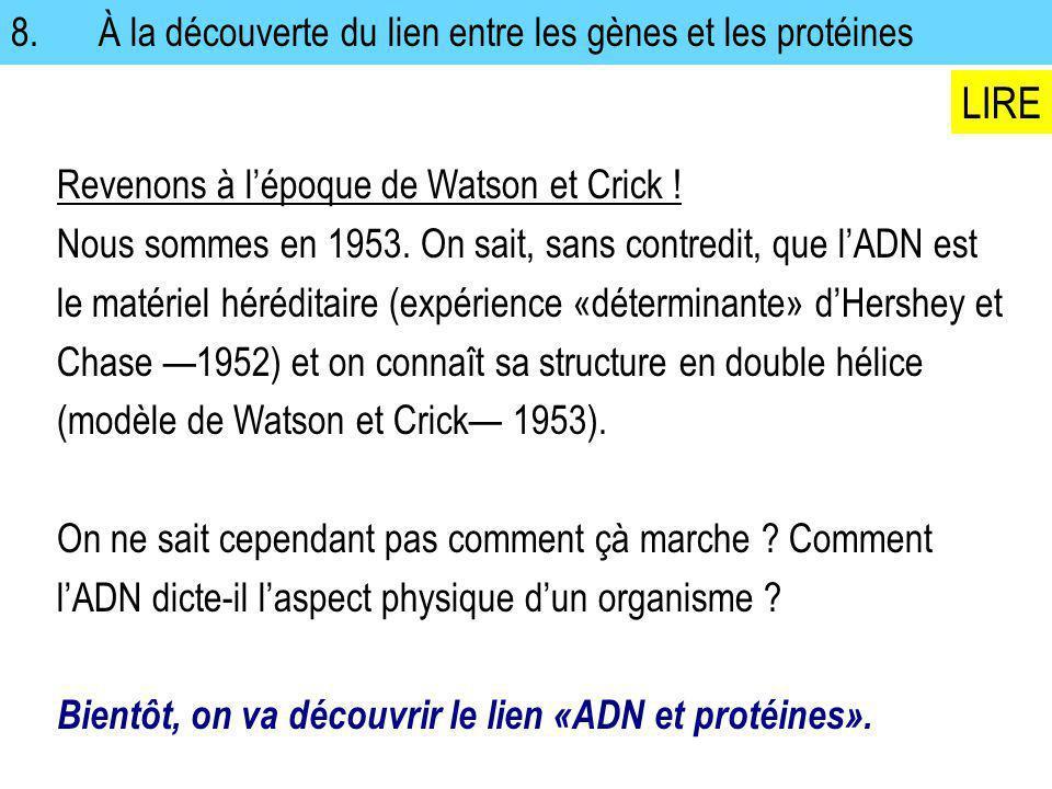 Revenons à lépoque de Watson et Crick ! Nous sommes en 1953. On sait, sans contredit, que lADN est le matériel héréditaire (expérience «déterminante»
