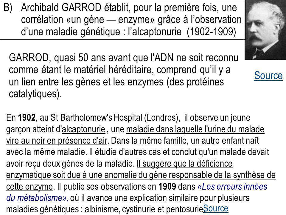 Source B)Archibald GARROD établit, pour la première fois, une corrélation «un gène enzyme» grâce à lobservation dune maladie génétique : lalcaptonurie