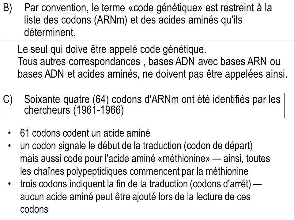 B)Par convention, le terme «code génétique» est restreint à la liste des codons (ARNm) et des acides aminés quils déterminent. Le seul qui doive être