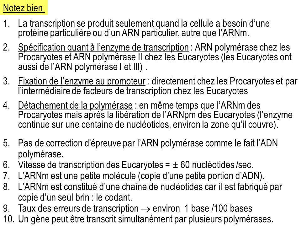 1.La transcription se produit seulement quand la cellule a besoin dune protéine particulière ou dun ARN particulier, autre que lARNm. 2.Spécification