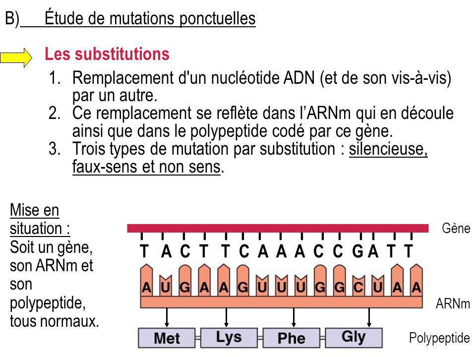 B)Étude de mutations ponctuelles Les substitutions 1.Remplacement d'un nucléotide ADN (et de son vis-à-vis) par un autre. 2.Ce remplacement se reflète