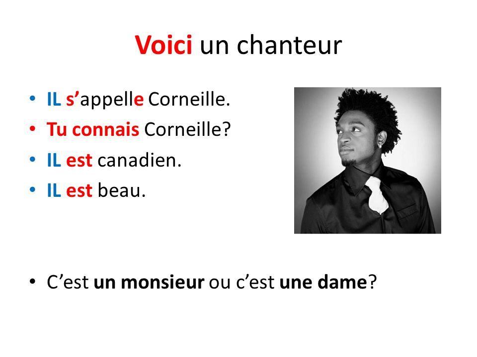 Voici un chanteur IL sappelle Corneille. Tu connais Corneille? IL est canadien. IL est beau. Cest un monsieur ou cest une dame?