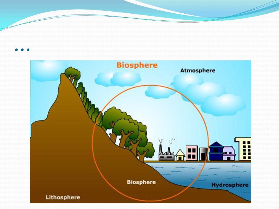 La distribution de leau sur la Terre