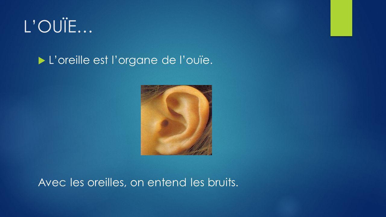 LOUÏE… Loreille est lorgane de louïe. Avec les oreilles, on entend les bruits.