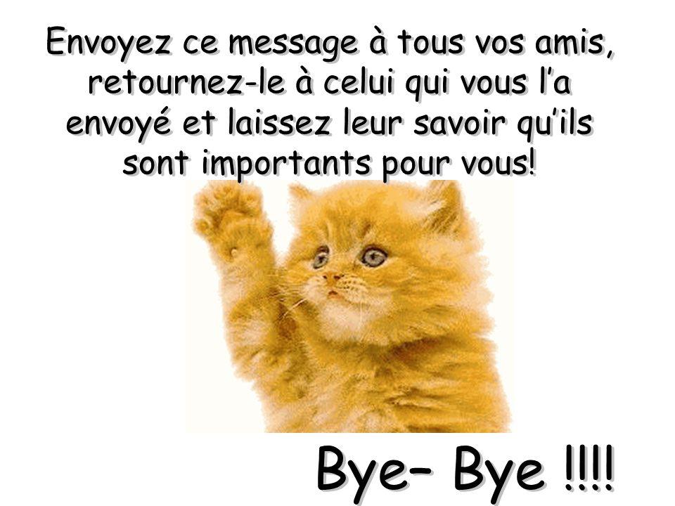 Envoyez ce message à tous vos amis, retournez-le à celui qui vous la envoyé et laissez leur savoir quils sont importants pour vous! Bye– Bye !!!!
