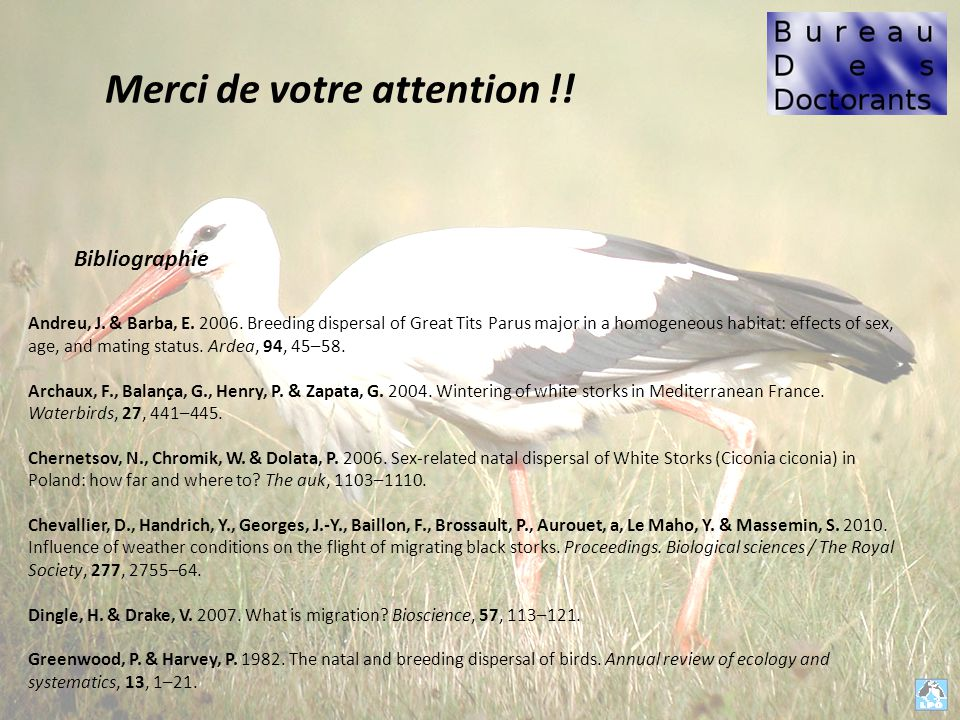 Merci de votre attention !.Andreu, J. & Barba, E.