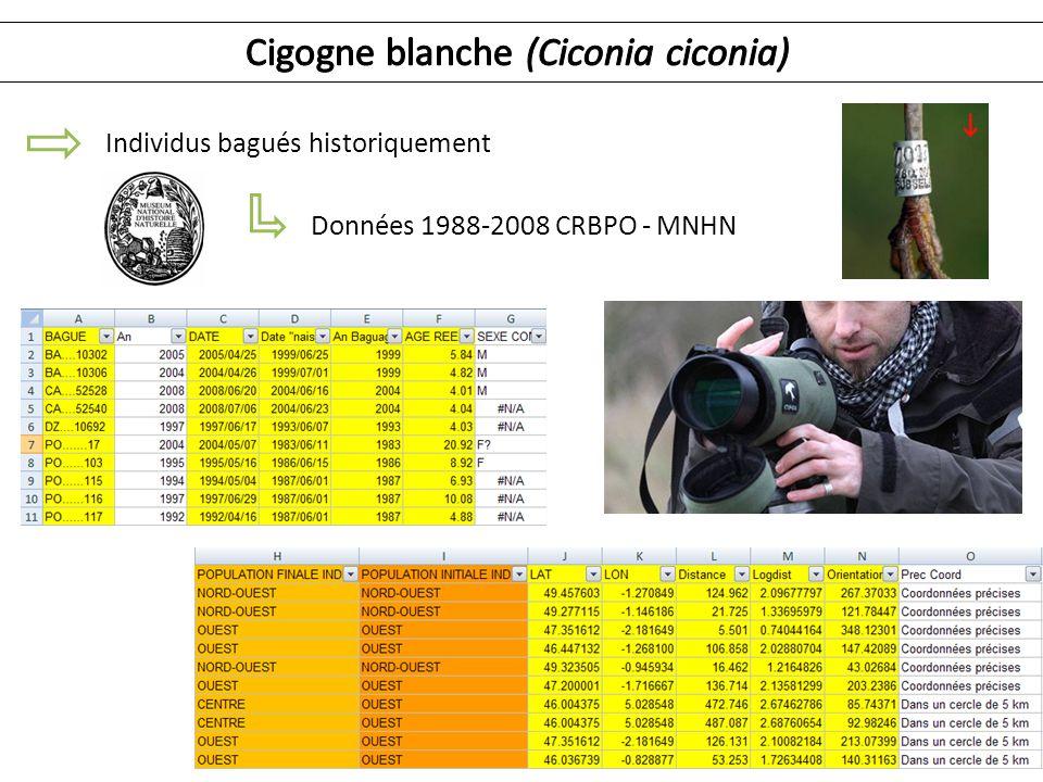 Individus bagués historiquement Données 1988-2008 CRBPO - MNHN