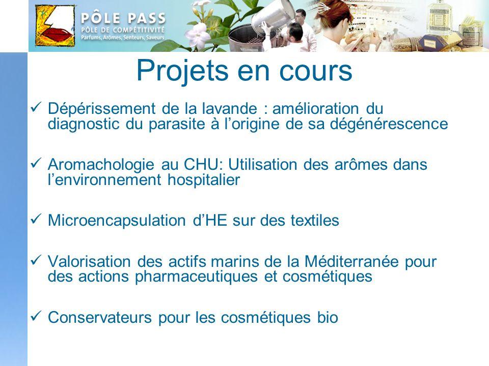 Projets en cours Dépérissement de la lavande : amélioration du diagnostic du parasite à lorigine de sa dégénérescence Aromachologie au CHU: Utilisatio