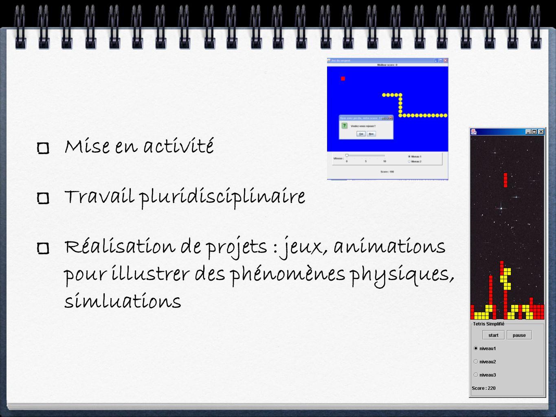 Mise en activité Travail pluridisciplinaire Réalisation de projets : jeux, animations pour illustrer des phénomènes physiques, simluations