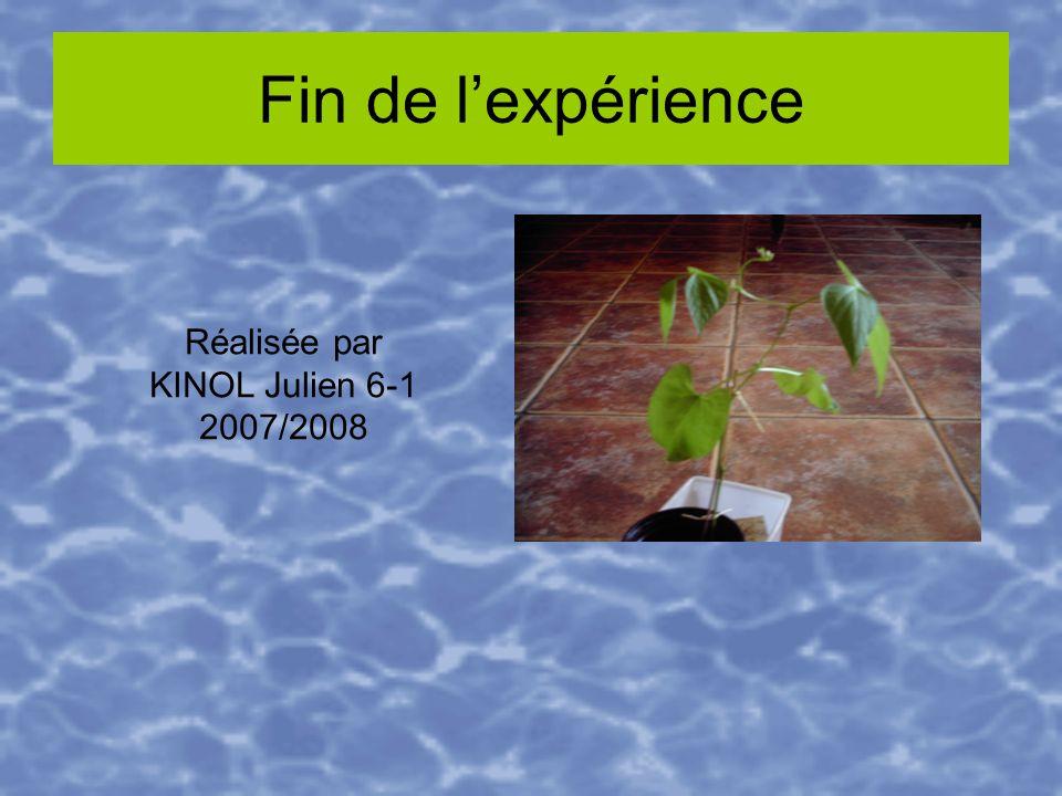 Fin de lexpérience Réalisée par KINOL Julien 6-1 2007/2008