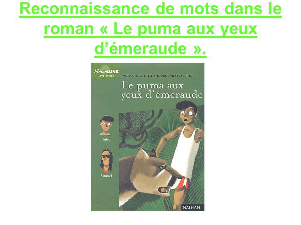 Reconnaissance de mots dans le roman « Le puma aux yeux démeraude ».