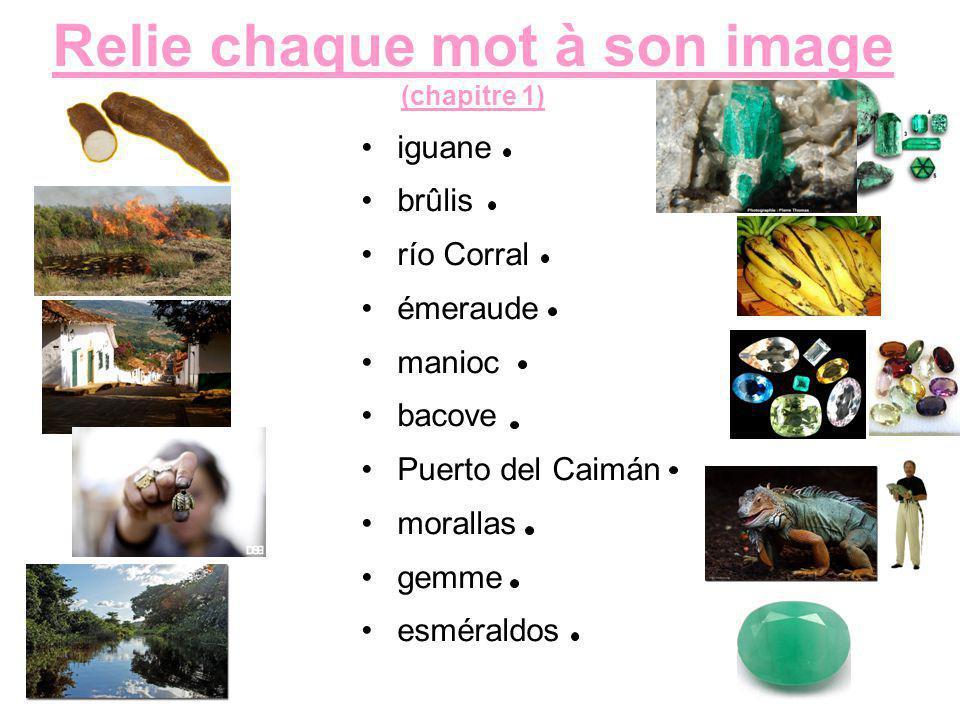 Relie chaque mot à son image (chapitre 1) iguane brûlis río Corral émeraude manioc bacove Puerto del Caimán morallas gemme esméraldos
