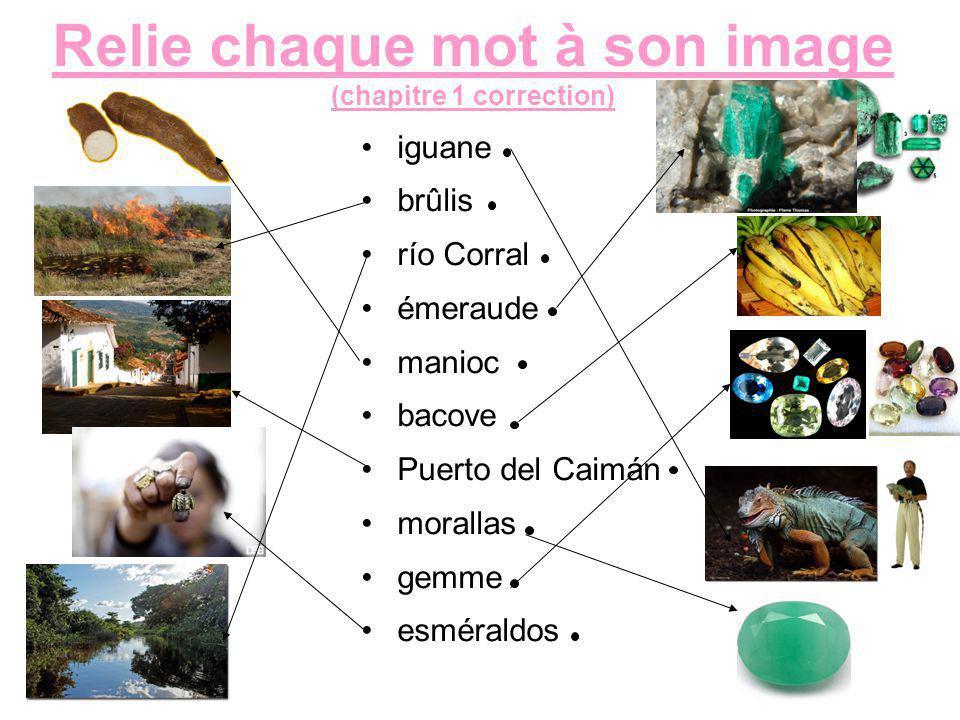 Relie chaque mot à son image (chapitre 1 correction) iguane brûlis río Corral émeraude manioc bacove Puerto del Caimán morallas gemme esméraldos