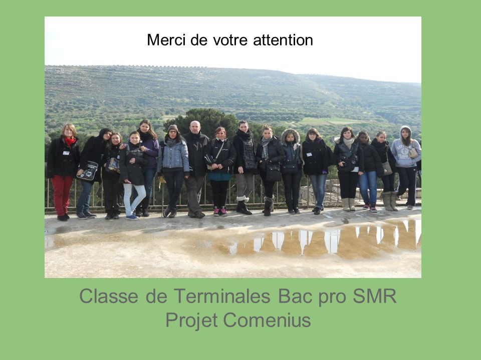 FIN Classe de Terminales Bac pro SMR Projet Comenius Merci de votre attention