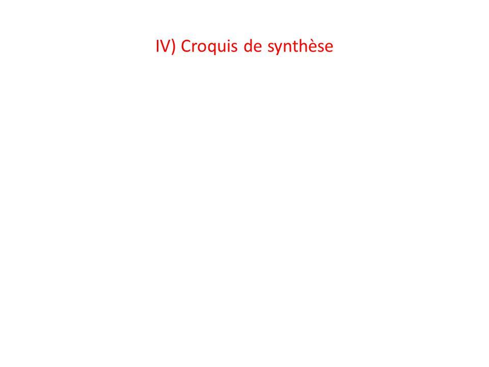 IV) Croquis de synthèse