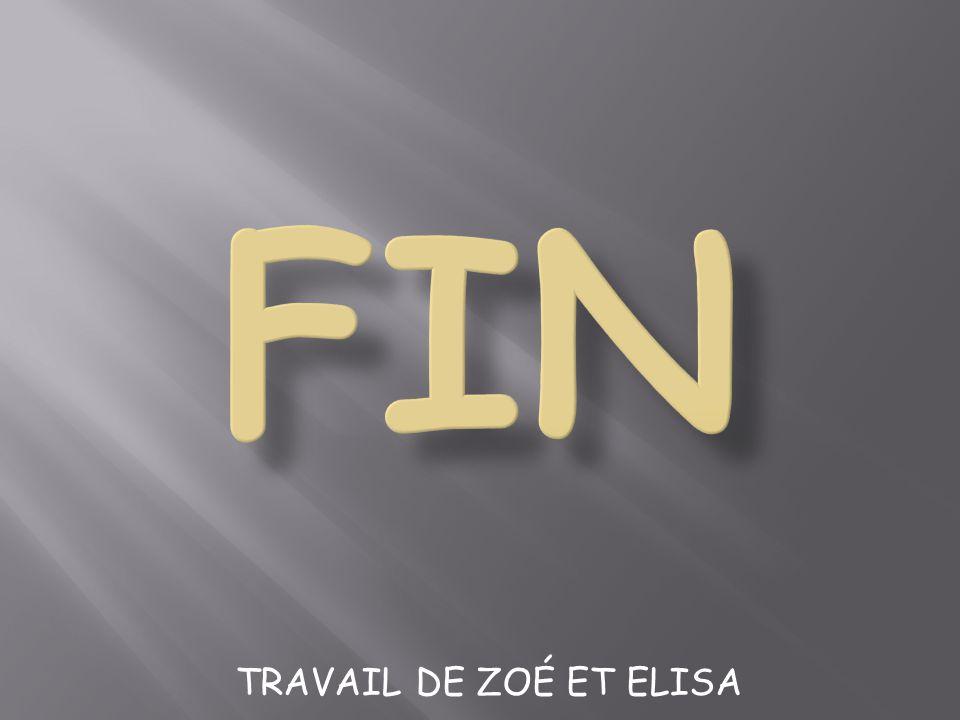 TRAVAIL DE ZOÉ ET ELISA