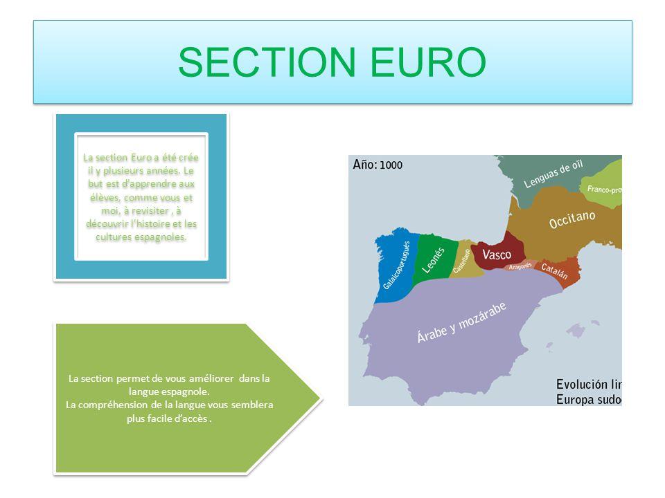 SECTION EURO La section Euro a été crée il y plusieurs années. Le but est dapprendre aux élèves, comme vous et moi, à revisiter, à découvrir lhistoire