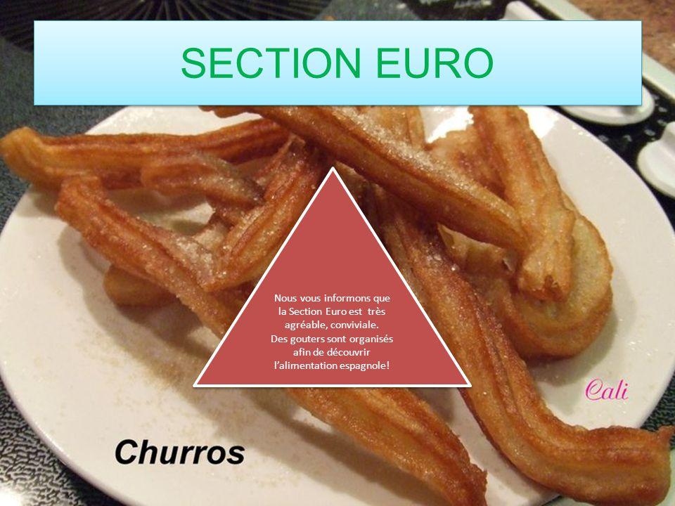 Nous vous informons que la Section Euro est très agréable, conviviale. Des gouters sont organisés afin de découvrir lalimentation espagnole! Nous vous