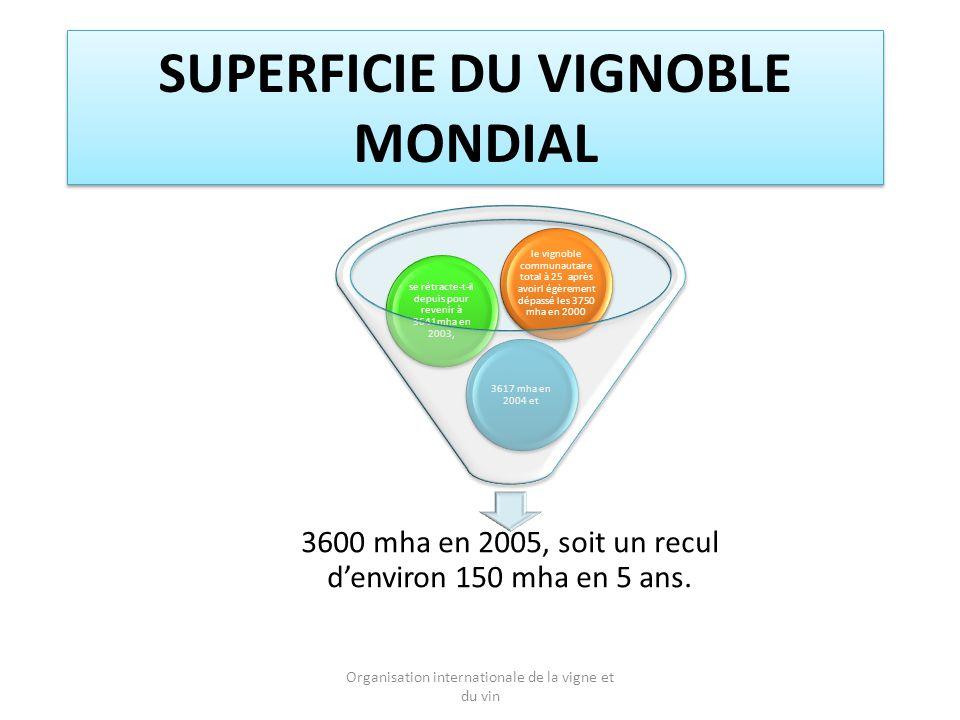 SUPERFICIE DU VIGNOBLE MONDIAL 3600 mha en 2005, soit un recul denviron 150 mha en 5 ans.