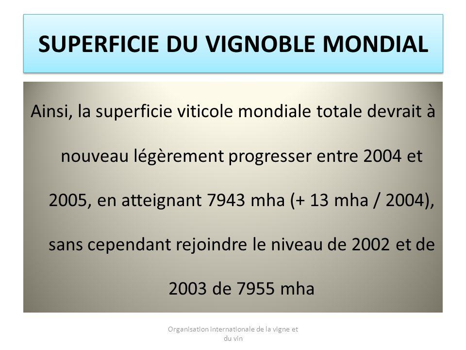 SUPERFICIE DU VIGNOBLE MONDIAL Ainsi, la superficie viticole mondiale totale devrait à nouveau légèrement progresser entre 2004 et 2005, en atteignant 7943 mha (+ 13 mha / 2004), sans cependant rejoindre le niveau de 2002 et de 2003 de 7955 mha Organisation internationale de la vigne et du vin