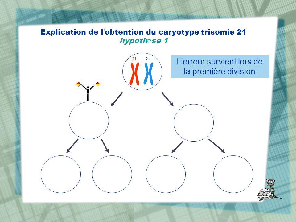 Explication de l obtention du caryotype trisomie 21 hypoth è se 1 21 Lerreur survient lors de la première division 21