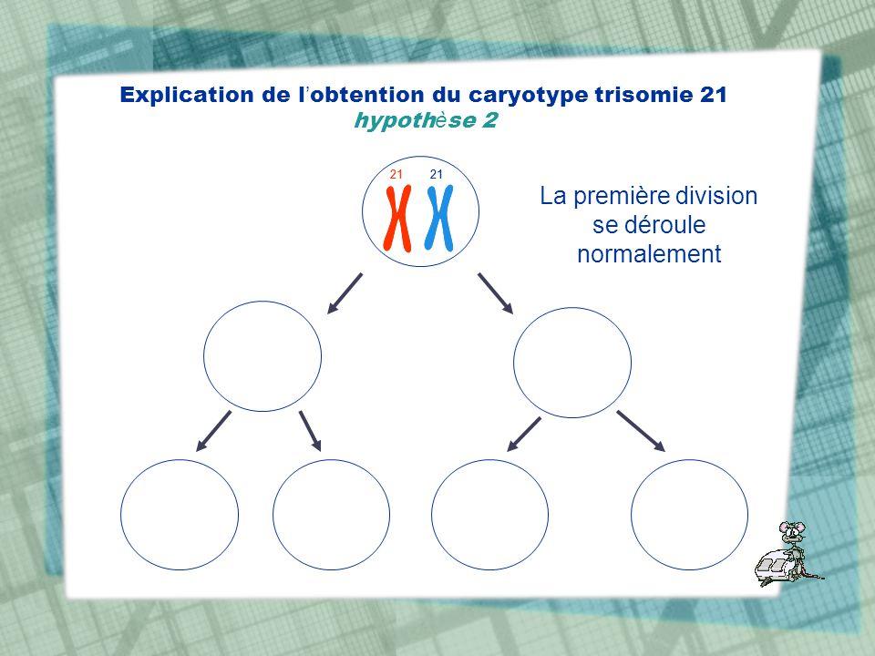 Explication de l obtention du caryotype trisomie 21 hypoth è se 2 21 La première division se déroule normalement 21