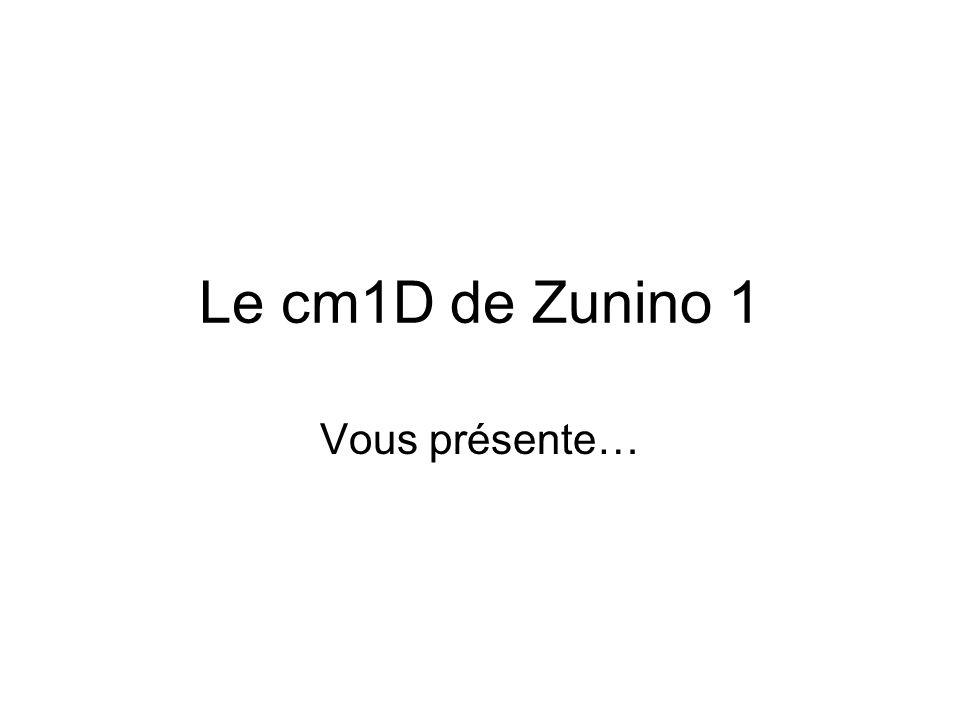 Le cm1D de Zunino 1 Vous présente…