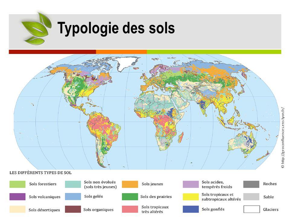 © http://geoconfluences.ens-lyon.fr/ Typologie des sols