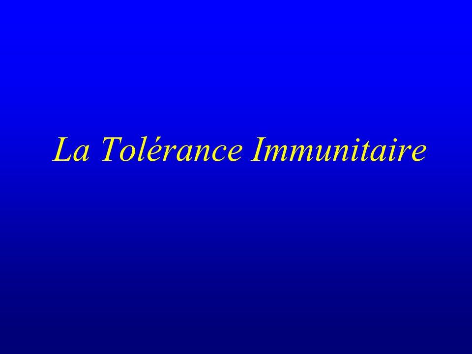 La tolérance immunitaire Une meilleure compréhension des interactions cellulaires et moléculaires entre les « deux » systèmes immunitaires sera la base de nouveaux traitements induisant sélectivement la tolérance ou la non tolérance à un antigène donné http://www.ulg.ac.be/medint/accueil.html