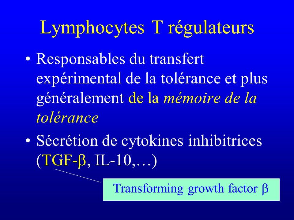 Lymphocytes T régulateurs Responsables du transfert expérimental de la tolérance et plus généralement de la mémoire de la tolérance Sécrétion de cytok