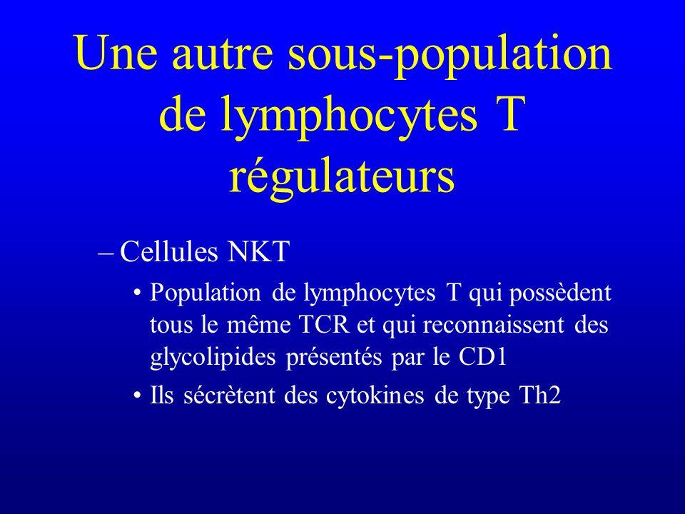 Une autre sous-population de lymphocytes T régulateurs –Cellules NKT Population de lymphocytes T qui possèdent tous le même TCR et qui reconnaissent d